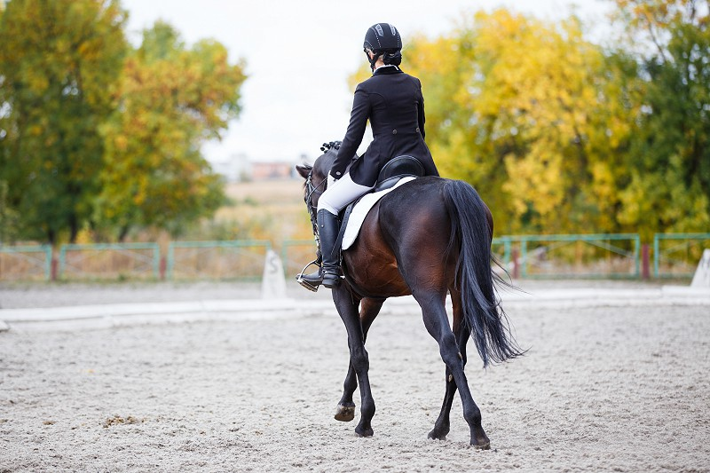 Dressage Results - 30th April 2015